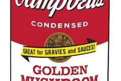 Andy-Warhol-Campbells-Soup